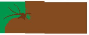 stay at pine croft ingleton